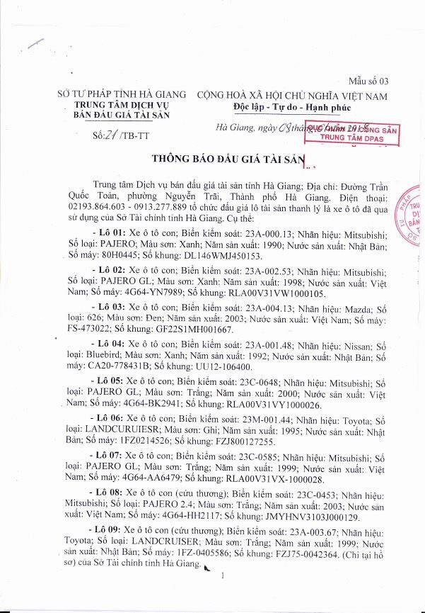 Đấu giá xe ô tô tại Hà Giang - ảnh 1