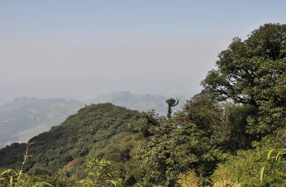 Vườn quốc gia Phia Oắc - Phia Đén có tổng diện tích tự nhiên 10.593,5 ha