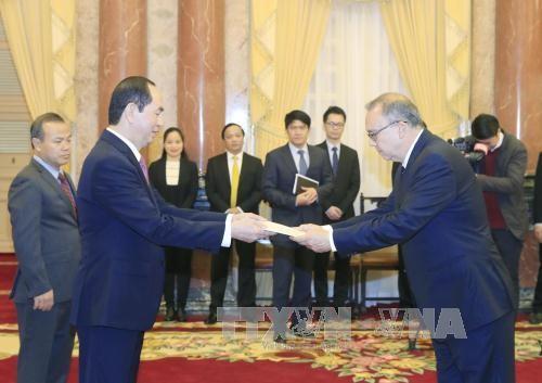 Chủ tịch nước tiếp các Đại sứ trình Quốc thư - ảnh 1