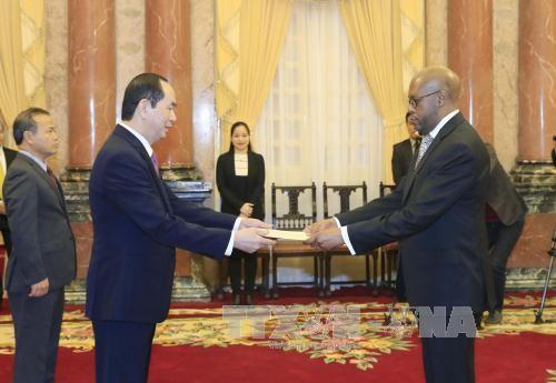 Chủ tịch nước tiếp các Đại sứ trình Quốc thư - ảnh 2