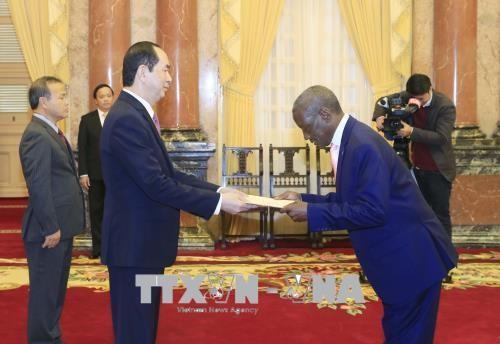 Chủ tịch nước tiếp các Đại sứ trình Quốc thư - ảnh 4
