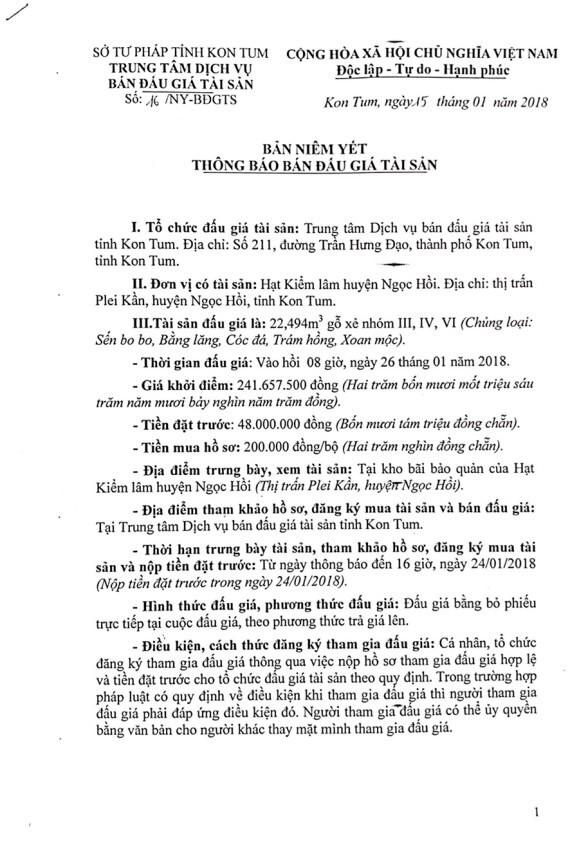Đấu giá gỗ xẻ nhóm III, IV, VI tại Kon Tum - ảnh 1