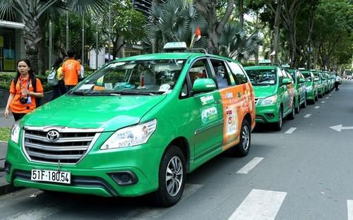 Lãnh đạo Tập đoàn Mai Linh thừa nhận doanh thu giảm 30% do cạnh tranh với Grab, Uber.