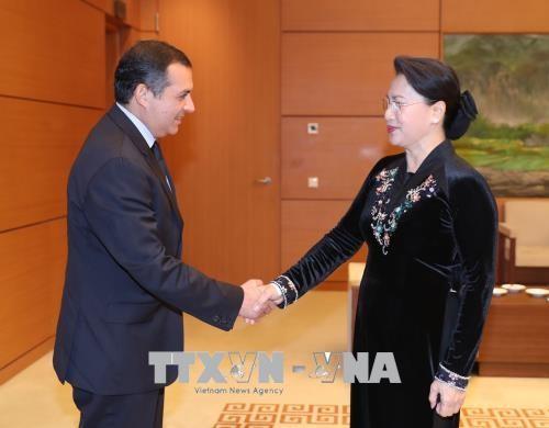 Chủ tịch Quốc hội tiếp các vị khách quốc tế - ảnh 1