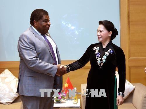 Chủ tịch Quốc hội tiếp các vị khách quốc tế - ảnh 3