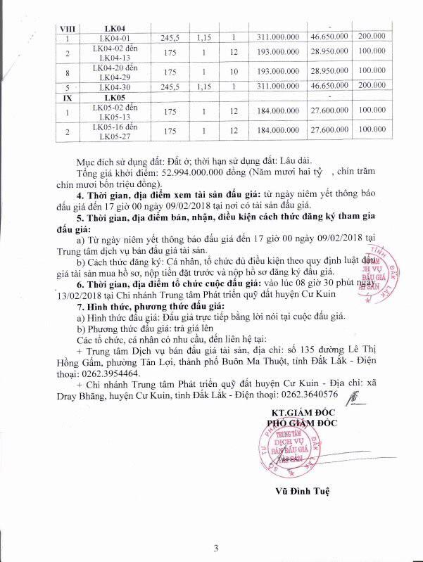 Đấu giá quyền sử dụng đất tại huyện Cư Kuin, Đắk Lắk - ảnh 3