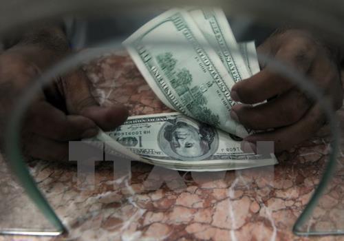 Tỷ giá USD hôm nay 1/3 tiếp tục tăng tại nhiều ngân hàng thương mại. Ảnh minh họa: TTXVN