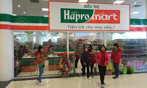 Là doanh nghiệp lớn trong lĩnh vực xuất nhập khẩu và thương mại nội địa, song điểm mạnh nhất của Hapro là danh mục bất động sản tại những vị trí đắc địa.