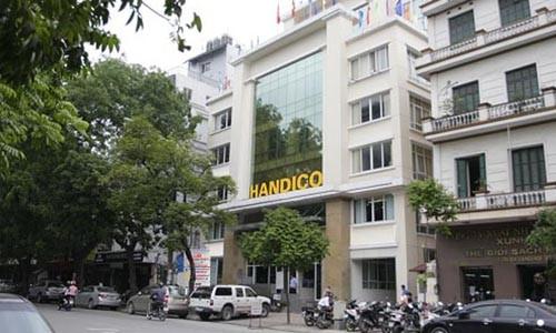 Một số công ty Handico góp vốn tính đến cuối năm 2016 có khoản lỗ lũy kế.