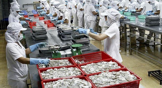 Thủy sản số 4  bị phạt truy thu thuế hơn 15 tỷ đồng