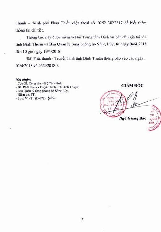 Đấu giá gỗ tại Bình Thuận - ảnh 3