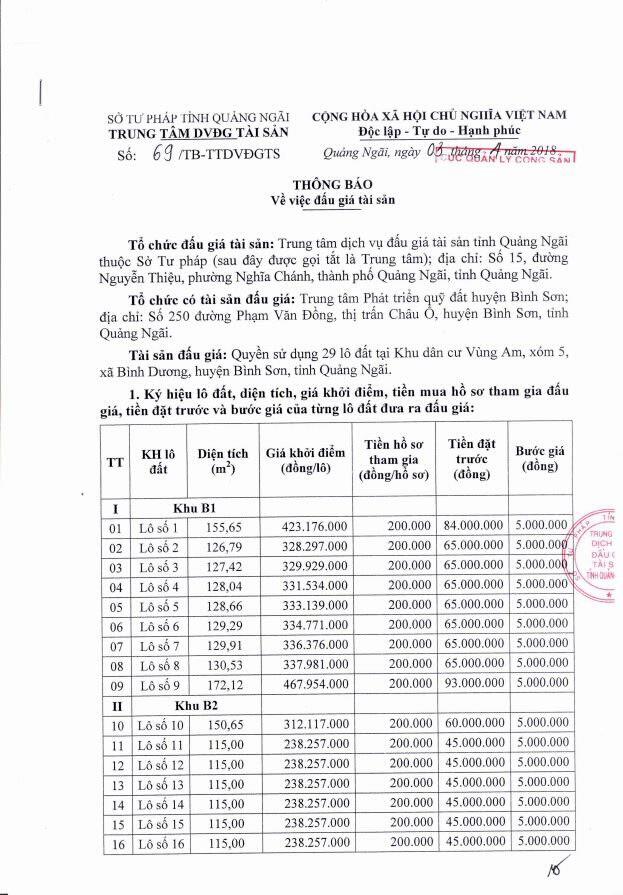 Đấu giá quyền sử dụng đất tại huyện Bình Sơn, Quảng Ngãi - ảnh 1
