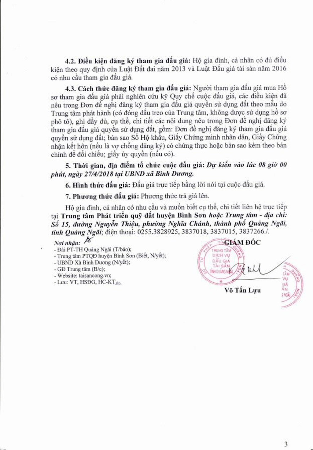 Đấu giá quyền sử dụng đất tại huyện Bình Sơn, Quảng Ngãi - ảnh 3