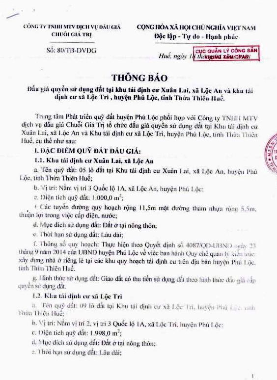 Đấu giá quyền sử dụng đất tại huyện Phú Lộc, Thừa Thiên Huế - ảnh 1