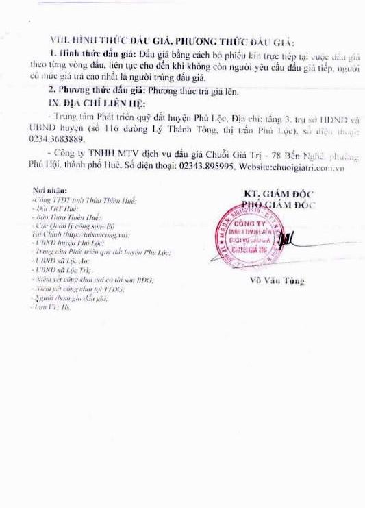 Đấu giá quyền sử dụng đất tại huyện Phú Lộc, Thừa Thiên Huế - ảnh 4