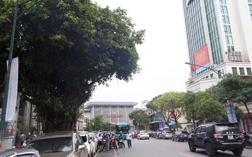 Hàng cây trên đường Trần Hưng Đạo cạnh ga Hà Nội sẽ được đánh chuyển, chặt hạ để làm nhà ga cuối cùng tuyến Metro Nhổn - Ga Hà Nội.