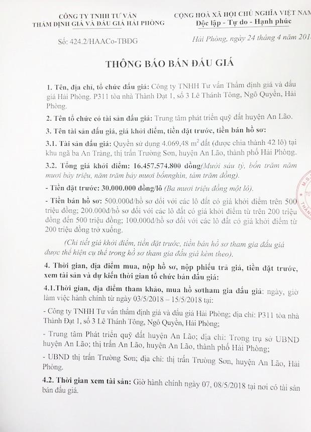 Đấu giá quyền sử dụng đất tại huyện An Lão, Hải Phòng - ảnh 1