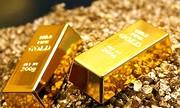 UBND TP HCM phải trả 2 kg vàng cho nam thanh niên