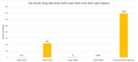 Kiểm toán Nhà nước đề nghị Bia Hà Nội tăng nộp ngân sách 1.847 tỷ đồng - ảnh 1