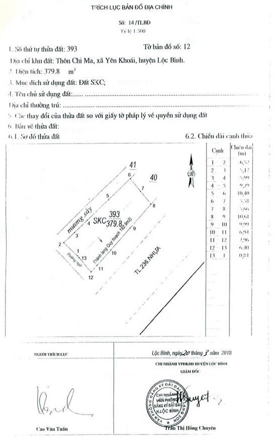 Đấu giá quyền sử dụng đất tại huyện Lộc Bình, Lạng Sơn - ảnh 4