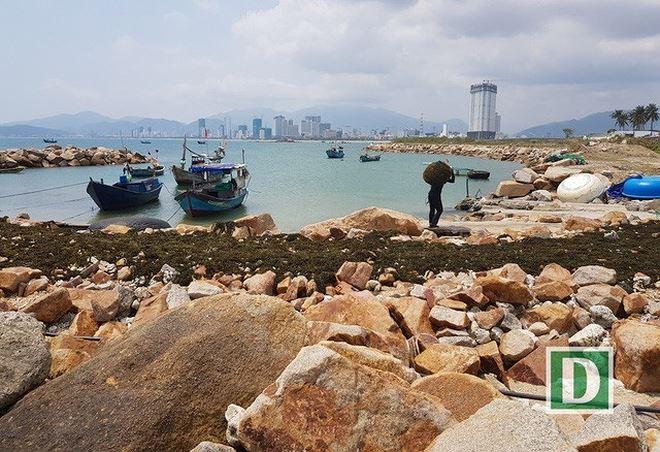 Dự án Nha Trang Sao (TP Nha Trang) từng bị xử phạt vì lấp danh thắng quốc gia Vịnh Nha Trang