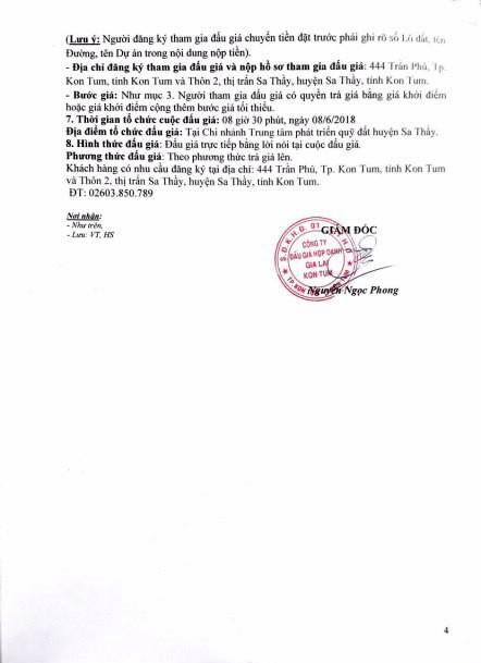 Đấu giá quyền sử dụng đất tại huyện Sa thầy, Kon Tum - ảnh 4