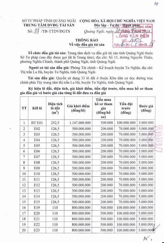 Đấu giá quyền sử dụng đất tại huyện Tư Nghĩa, Quảng Ngãi - ảnh 1
