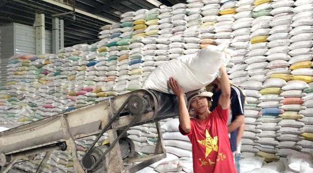 Mức giá trúng thầu thấp nhất chỉ là 461,75 USD một tấn gạo khiến các DN Việt Nam không trúng thầu bán gạo cho Philippines - Ảnh: TL