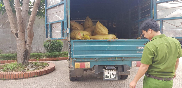 Mở thùng xe tải phát hiện hơn 600kg pháo các loại - ảnh 1