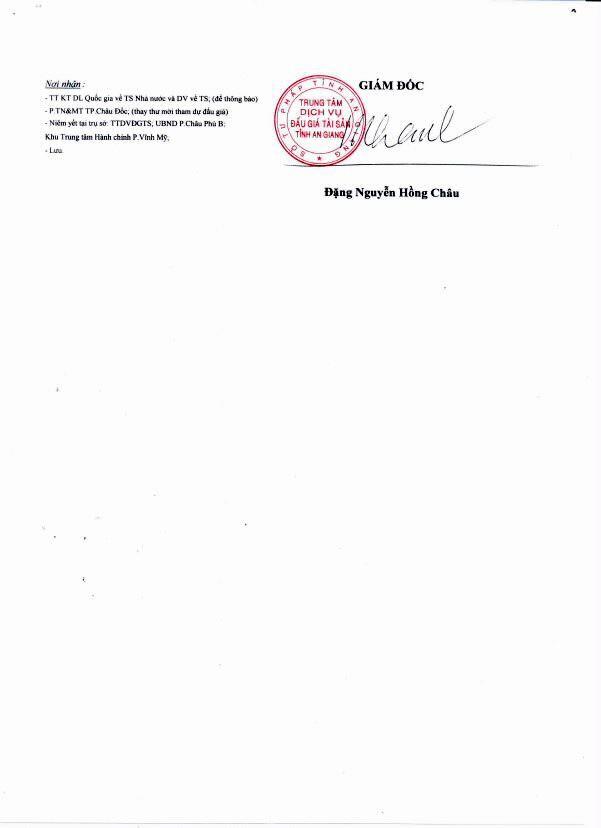 Đấu giá quyền sử dụng đất tại thành phố Châu Đốc, An Giang - ảnh 2
