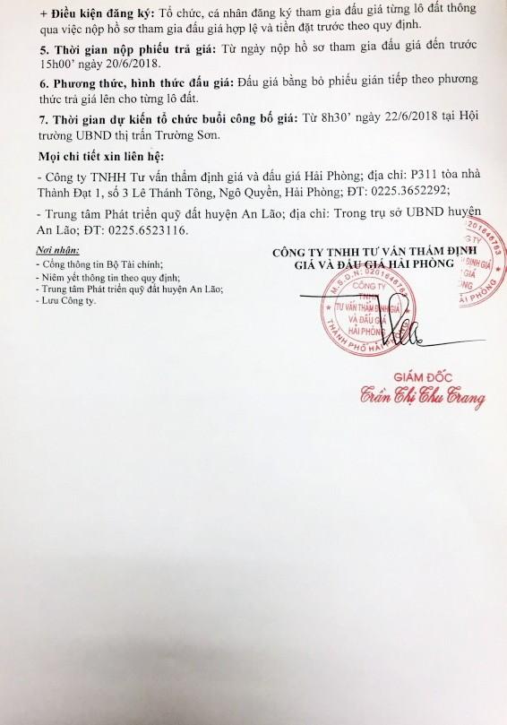 Đấu giá quyền sử dụng đất tại huyện An Lão, Hải Phòng - ảnh 2
