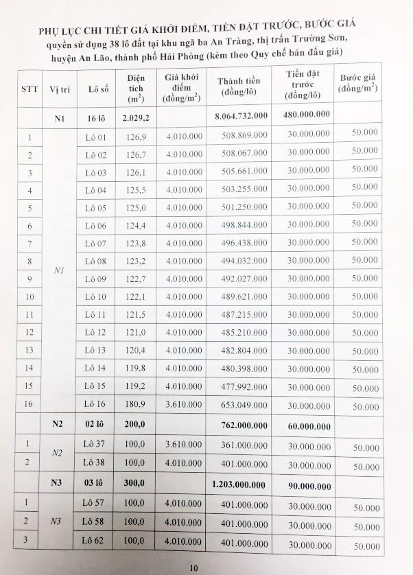 Đấu giá quyền sử dụng đất tại huyện An Lão, Hải Phòng - ảnh 3