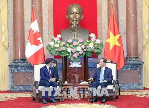 Chủ tịch nước tiếp Bộ trưởng Bộ Quốc phòng Canada - ảnh 1