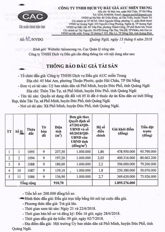 Đấu giá quyền sử dụng đất tại huyện Đức Phổ, Quảng Ngãi - ảnh 1