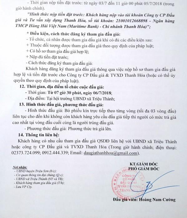 Đấu giá quyền sử dụng đất tại huyện Triệu Sơn, Thanh Hóa - ảnh 3