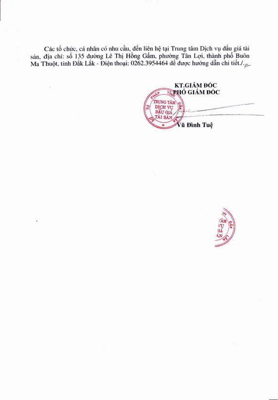 Đấu giá quyền sử dụng đất tại huyện Buôn Đôn, Đắk Lắk - ảnh 3