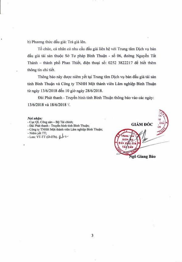 Đấu giá gỗ rừng trồng Keo lai tại Bình Thuận - ảnh 3
