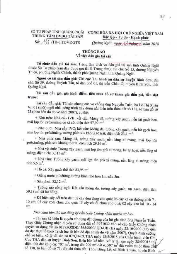 Đấu giá quyền sử dụng đất và TSGLVĐ tại huyện Bình Sơn, Quảng Ngãi - ảnh 1