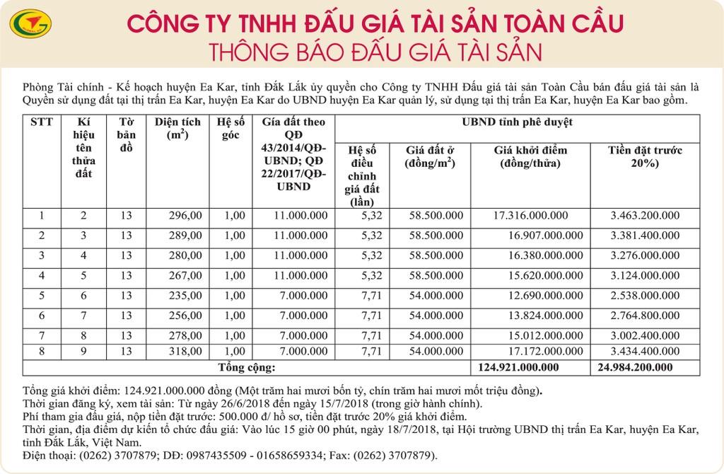 Đấu giá quyền sử dụng đất tại huyện Ea Kar, Đắk Lắk - ảnh 1