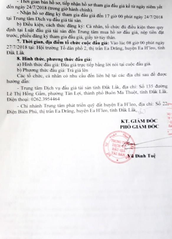 Đấu giá quyền sử dụng đất tại huyện Ea H'leo, Đắk Lắk - ảnh 2