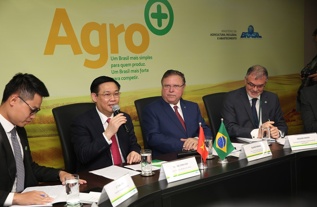 Brazil coi trọng vị thế của Việt Nam tại khu vực Đông Nam Á - ảnh 4