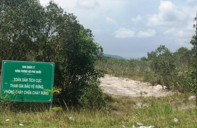 Thời gian vừa qua, ngoài tình trạng các doanh nghiệp thi nhau phân lô xẻ nền đất nông nghiệp trên đảo Phú Quốc, còn hiện tượng lén lút phá rừng, lắp suối.