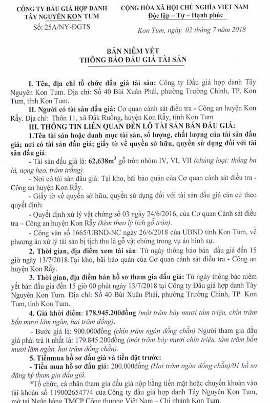 Đấu giá gỗ tròn nhóm IV, VI, VII tại Kon Tum - ảnh 1