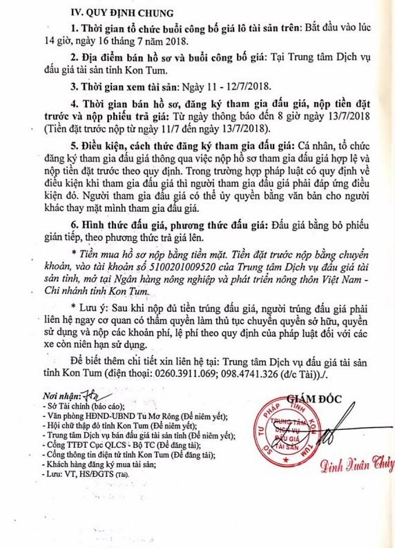Đấu giá xe ô tô tại Quảng Ngãi - ảnh 2