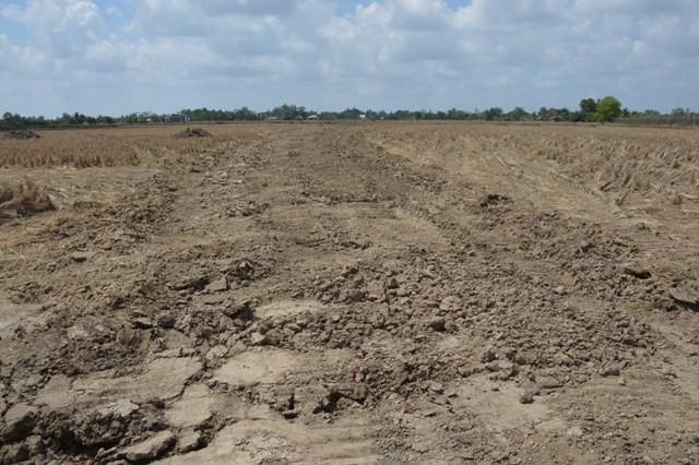 Hàng trăm ha đất công ở Cà Mau được cho thuê, mượn không đúng quy định. Ảnh minh họa