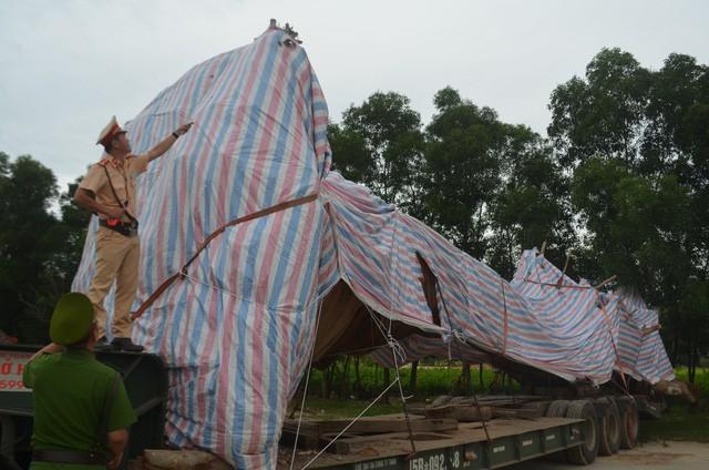 """Sau gần 2 ngày chốt chặn, lực lượng CSGT tỉnh Quảng Ngãi đã tìm phát hiện địa điểm xe chở cây """"khủng"""" đang đỗ."""