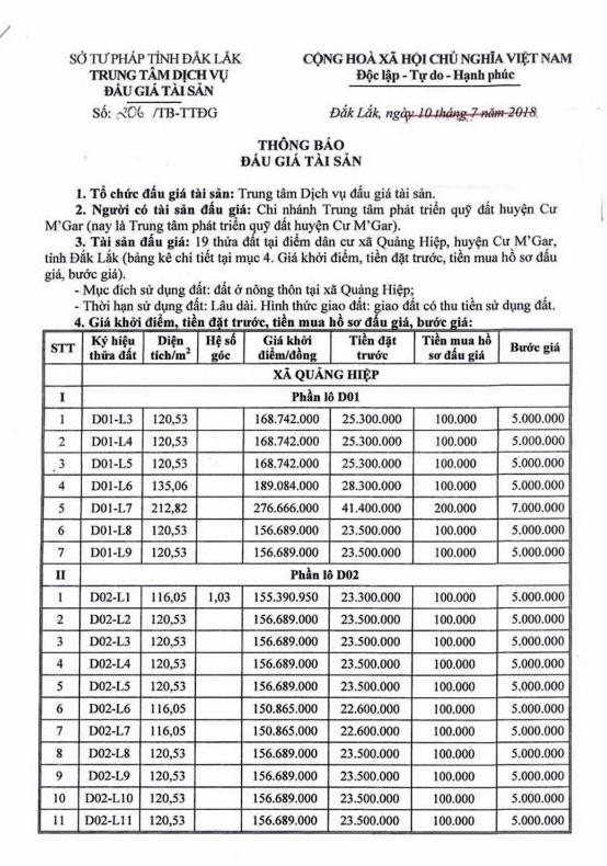 Đấu giá quyền sử dụng đất tại huyện Cư M'gar, Đắk Lắk - ảnh 1