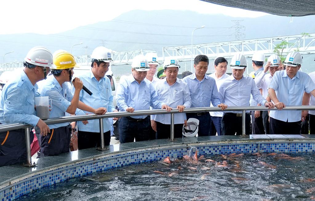 Thủ tướng thị sát hoạt động, làm việc với Formosa Hà Tĩnh - ảnh 3