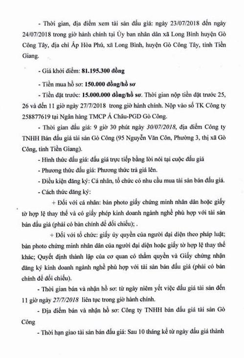 Đấu giá quyền sử dụng đất tại huyện Gò Công, Tiền Giang - ảnh 2