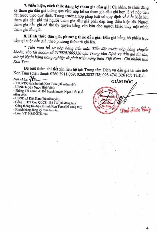 Đấu giá quyền sử dụng đất tại huyện Ngọc Hồi, Kon Tum - ảnh 4